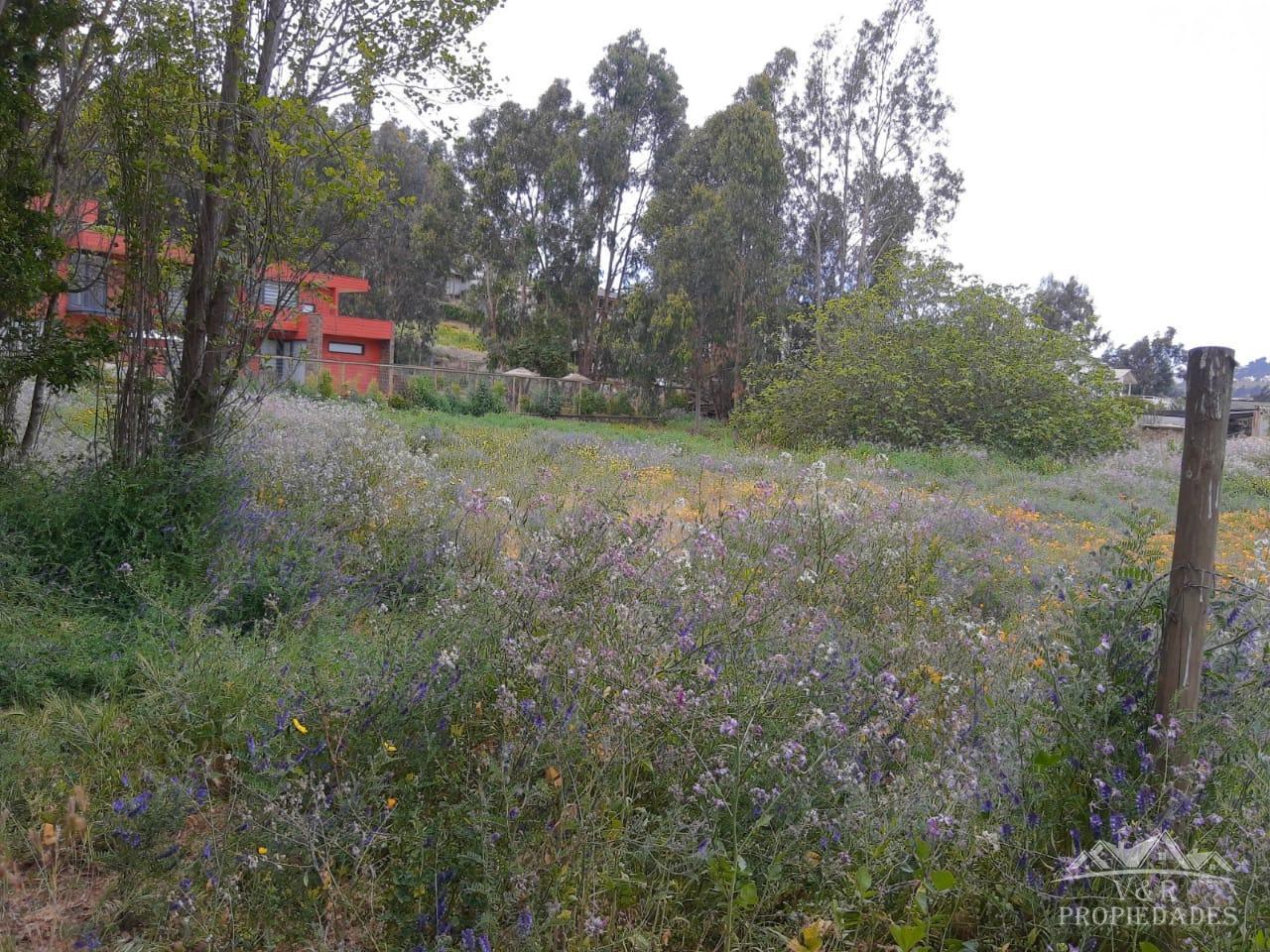 Vendo Terreno de 3800 m2 en Maitencillo